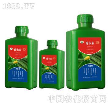 黄瓜专用氨基酸螯合液肽
