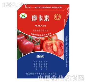 番茄专用氨基酸螯合液肽