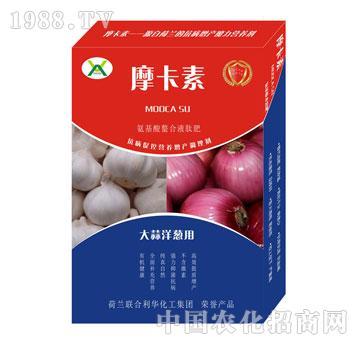 大蒜洋葱专用氨基酸螯合