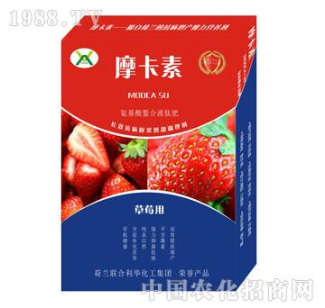 草莓专用氨基酸螯合液肽