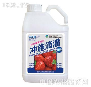 冲施滴灌草莓专用-沃丰