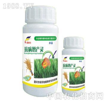 小麦抗病增产灵-漯康壮