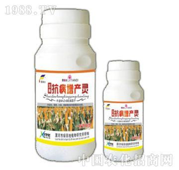 玉米抗病增产灵(浓缩精品装)-漯康壮