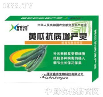 黄瓜抗病增产灵-漯康壮