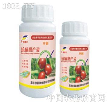 枣树抗病增产灵-漯康壮