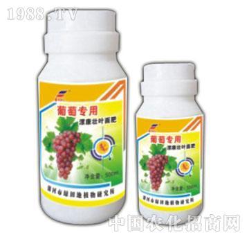 葡萄专用液肥-漯康壮