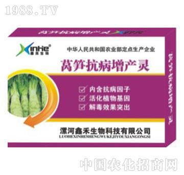 莴苣抗病增产灵-漯康壮