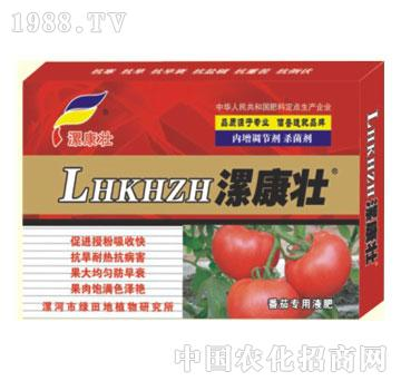番茄专用液肥-漯康壮