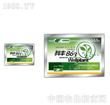 科丰863-济南中科