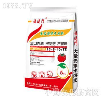 西红柿膨果专用肥-福进