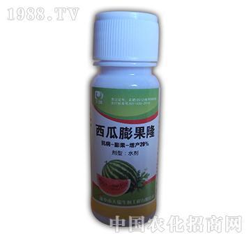 西瓜膨果隆-天瑞生物