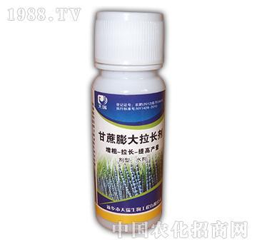 甘蔗膨大拉长剂-天瑞生物