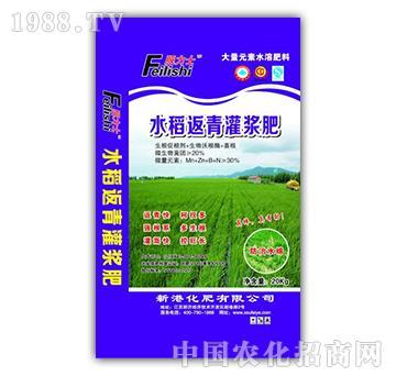 水稻返青灌溉肥-新盛源