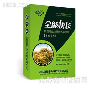 全能快长(水稻专用)-新型高效浓缩营养调节剂-为峰
