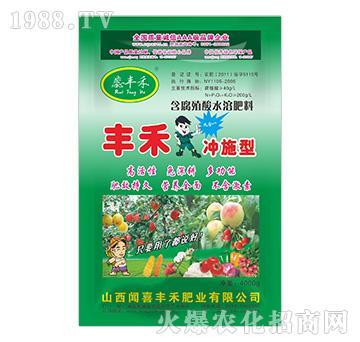 含腐殖酸水溶肥料(冲施型)-闻喜丰禾