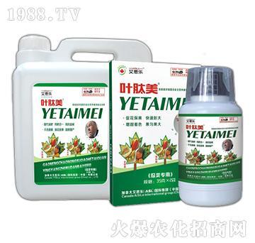 瓜类专用液肥-叶肽美-