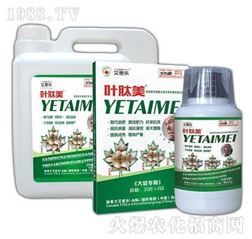 大蒜专用液肥-叶肽美-艾思乐