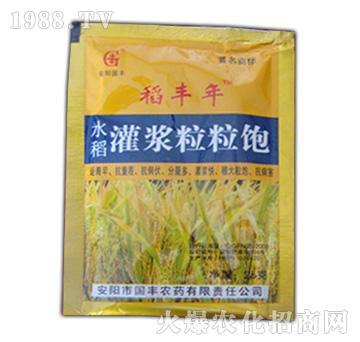 稻丰年水稻灌浆粒粒饱-
