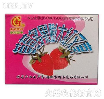 草莓多果膨大红又亮-国