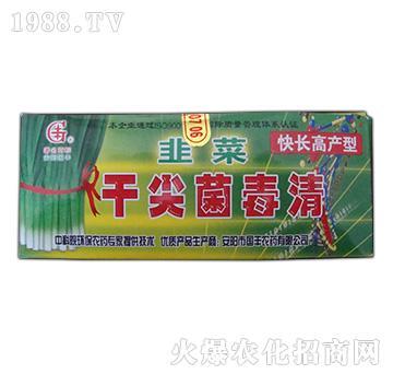 韭菜干尖菌毒清(快长高