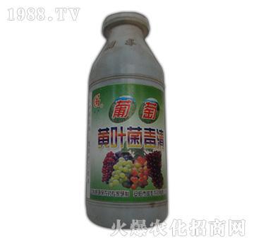 葡萄黄叶菌毒清-国丰