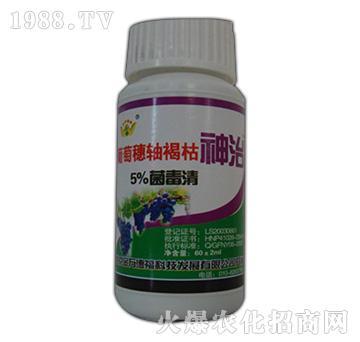 5%菌毒清-葡萄穗轴褐