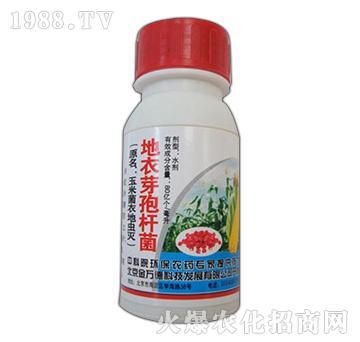地衣芽孢杆菌-玉米菌衣