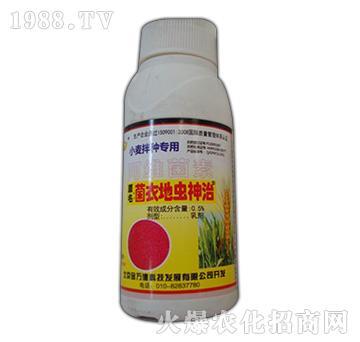 0.5%阿维菌素-小麦菌衣地虫神治-国丰