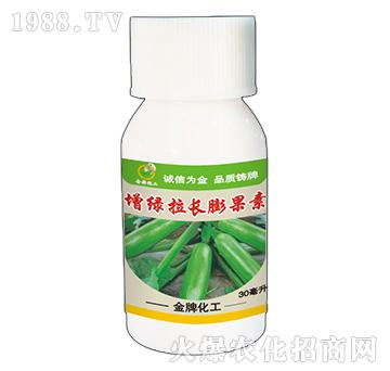 西葫芦增绿拉长膨大素-