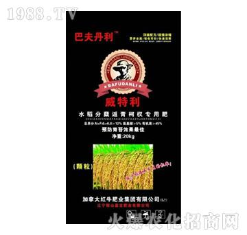 20kg水稻分蘖返青柯杈专用肥-威特利-嘉吉肥业