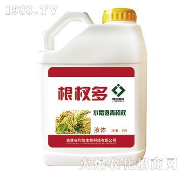 根杈多水稻返青肥-金利