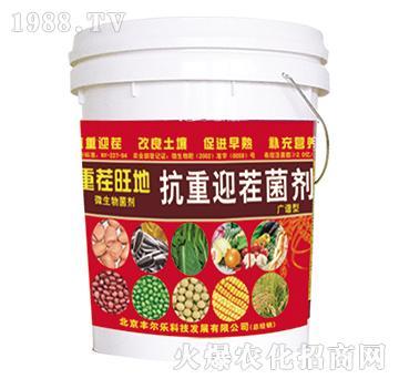 抗重迎茬菌剂-重茬旺地-丰尔乐