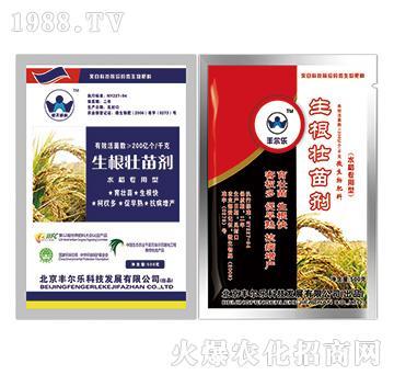 生根壮苗剂-水稻专用型-丰尔乐