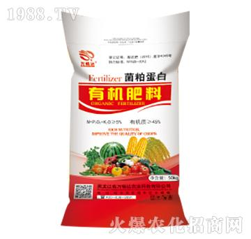 菌粕蛋白有机肥(颗粒)