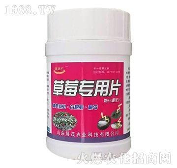 草莓专用糖化硼肥片-晨茂