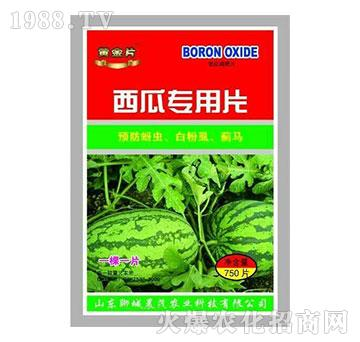 西瓜专用糖化硼肥片-晨茂