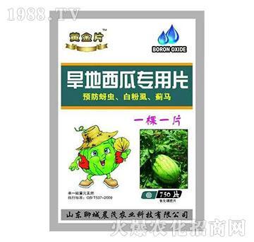 旱地西瓜专用糖化硼肥片-晨茂