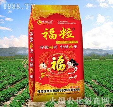 20kg福粒-住商红福
