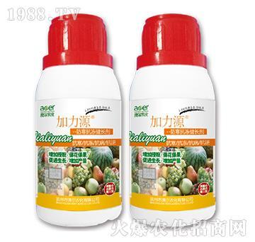 加力源防寒抗冻健长剂-澳尔农化-邹平农药