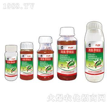 5%高氯甲维盐-万克-邹平农药