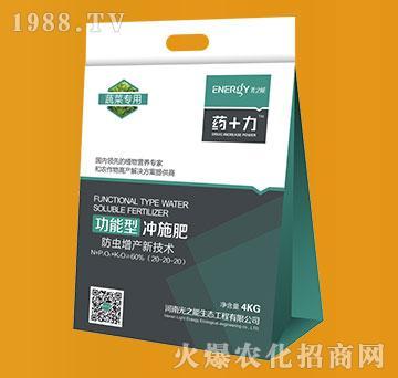 4kg蔬菜专用功能型水溶肥20-20-20-药+力-光之能