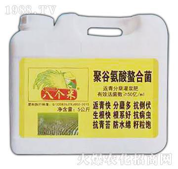 聚谷氨酸螯合菌-八个米-富国