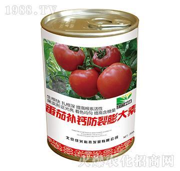 番茄补钙防裂膨大素-海