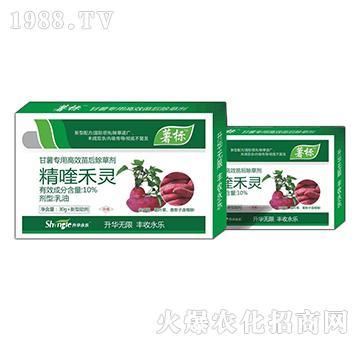 红薯田杂草防治-苗后专用除草剂