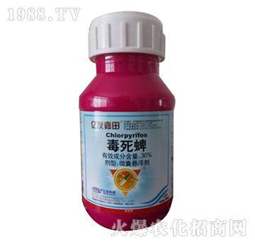 亿友嘉田-30%毒死蜱微胶囊花生、土豆、大蒜拌种剂(红色1+1+1)