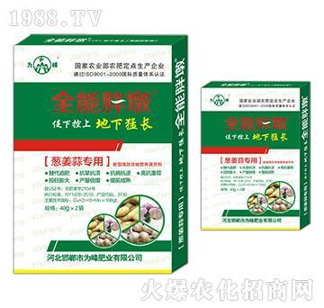 葱姜蒜专用-全能胖墩-