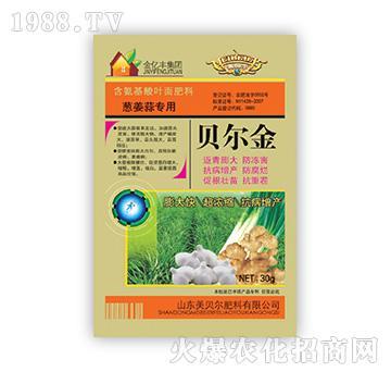 葱姜蒜专用-贝尔金-金