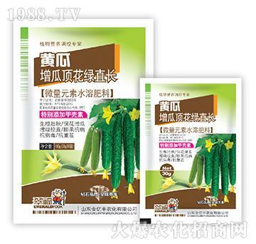 黄瓜增瓜顶花绿直长-金