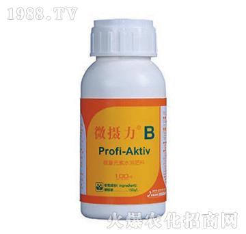 Rich-AktivB微量元素水溶肥料-微摄力-神农氏