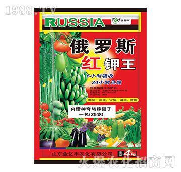 俄罗斯红钾王-金亿丰